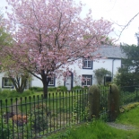 Charming Cumbrian country cottage
